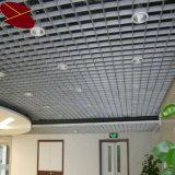 Потолок открытой местности размера клетки 125*125mm пальто порошка Китая оптовый