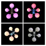 Цвет освещения СИД изменяя свет шарика сада СИД