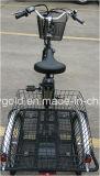 triciclo eléctrico Trike de la rueda grande de 36V 250W para la venta