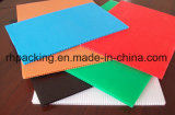 Holle Raad van pp/Golf Plastic Blad 1000*2000mm*2mm, 1200*2400mm*3mm voor Bescherming