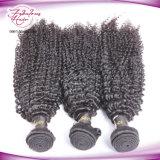 Tissage brésilien de cheveux humains de Vierge bouclée crépue de 100%