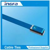 Régulièrement des attaches de métal en acier inoxydable avec revêtement en PVC 300mm x 4,6 mm