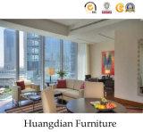 ドバイの市場(HD876)のための最高の現代ホテルの家具