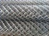 Rete fissa saldata galvanizzata PVC di collegamento Chain della rete metallica per il campo da giuoco