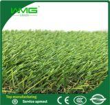 Het mooie Groene Gras in China voor verkoopt