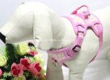 Big Dog faisceau de fils du faisceau de tissu imprimé Airmesh chien