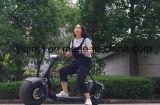 Город на велосипеде 800W/1000W бесщеточный взрослых электрический скутер 2 Колеса Citycoco (JY-ES005)