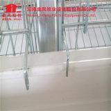 ein Type/H Typ Großverkauf-Schicht-Huhn-Rahmen-Geflügel-Geräten-Fertigung