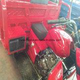 Motociclo della rotella di abitudine tre con della casella la parte posteriore sopra