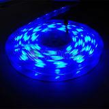 Indicatore luminoso di striscia flessibile di RGB LED con l'alta qualità SMD5050 60LEDs/M 12V, CC 24V