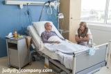 Cama de Metal Muebles médicos del hospital de enfermería del Hospital eléctrico de la cama con polo V. I.