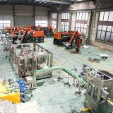Linea di produzione di chiave in mano del macchinario dell'imbottigliamento dell'acqua minerale dell'acciaio inossidabile di progetto