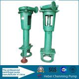 Zentrifugale Übergangsklärschlamm-Hochdruckzubringerpumpe