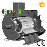 generatore magnetico di 2kw 500rpm, generatore magnetico permanente di CA di 3 fasi, uso dell'acqua del vento con il RPM basso