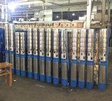 6spシリーズステンレス鋼の潅漑のための浸水許容の深い井戸ポンプ