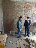 構築のための機械価格を塗る一度だけの仕上げの技術の自動壁