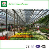 precio de fábrica de efecto invernadero de vidrio con sistema hidropónico para la Agricultura