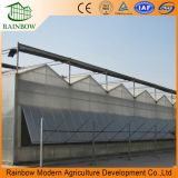 Venlo Flower greenhouse Feuille vert en polycarbonate PC House (MVPT)