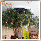 Novo Design Piscina Fake Plastic By Banyan Tree Artificial