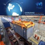 ベテラン及び信頼できる香港またはシンセンまたは広州またはフォーシャンの貨物運送業者
