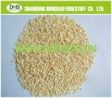 L'ail granules déshydratés Spice, 26-40, 40-80 Super qualité pour le marché japonais