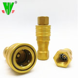Connettori rapidi ad alta pressione idraulici del tubo flessibile dell'accoppiamento dell'accessorio per tubi