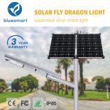 Alumbrados públicos solares de Bluesmart 100W IP65 LED con teledirigido