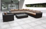 Rotin extérieur/sofa en osier des meubles 8PCS réglé (MTC-012)