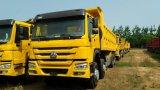 Vrachtwagen van de Stortplaats van China van de Vrachtwagen van de Stortplaats HOWO de Beroemde