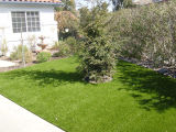 Kunstmatig Gras voor Kleuterschool /Yard/Garden
