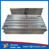 ニースの出現の構築の足場鋼鉄板