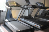 분홍색 Treadmills 또는 Commercial Treadmills Life Fitness