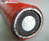 Conducteur en cuivre avec isolation XLPE /PVC Câble d'alimentation