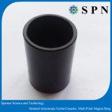 Starker NdFeB Ring-Magnet-gesinterter Multipolmagnet für BLDC Motor