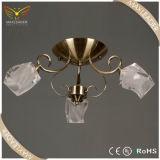 Moderner Form-Küche-Entwerfer-Glasdeckenleuchte (MX5220)