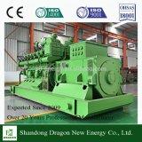 Norma ISO Gruppo elettrogeno del gas naturale di 600 chilowatt