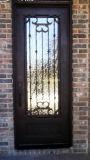 水立方ガラスが付いている銅の終了する錬鉄の単一の前ドア