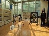 Цепная пила газолина с хорошим качеством и конкурентоспособной ценой