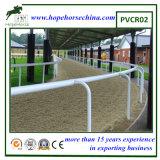Rete fissa flessibile poco costosa di corsa di cavalli