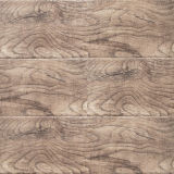 Plancher conçu imperméable à l'eau de stratifié en bois d'Eco