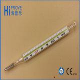 Iso Approval Rectal Clinical Mercury Thermometer del CE di FDA con Alto-qualità