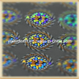 Holograma de grabado láser etiquetas (H-059)