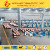 工場は直接ガスによって保護される溶接ワイヤEr70s-6をエクスポートする