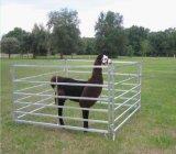 painel oval do cavalo do gado de Austrália da câmara de ar de 1800mm*2100mm