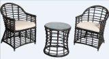 100% بلاستيك خشب لأنّ خارجيّ أثاث لازم متنزّه أثاث لازم مع كرسي تثبيت