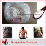 Pó Dromostanolone Enanthate Masteron de Buidling do músculo