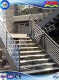 Galvanizado en caliente Estructura de acero escalera / escalera de acero (FLM-SP-001)