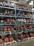 Ds-elektrischer Motor für Pumpe mit UL-Liste