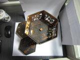 Het Document die van de luxe Vakjes Mooncake met LEIDEN Licht verpakken