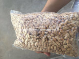 Grains rôtis d'arachide salés et goût Unsalty